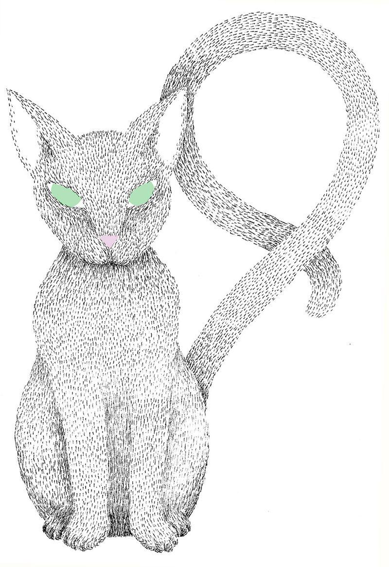 04-Nine-Cat