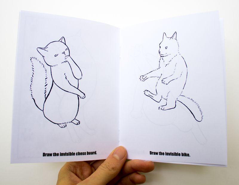 10-cat-activities3