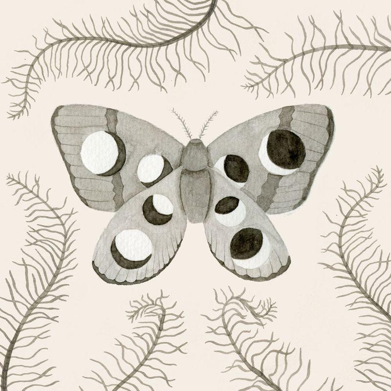 06-Moth-Pillow
