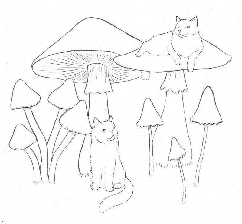 18-mushroom-cats