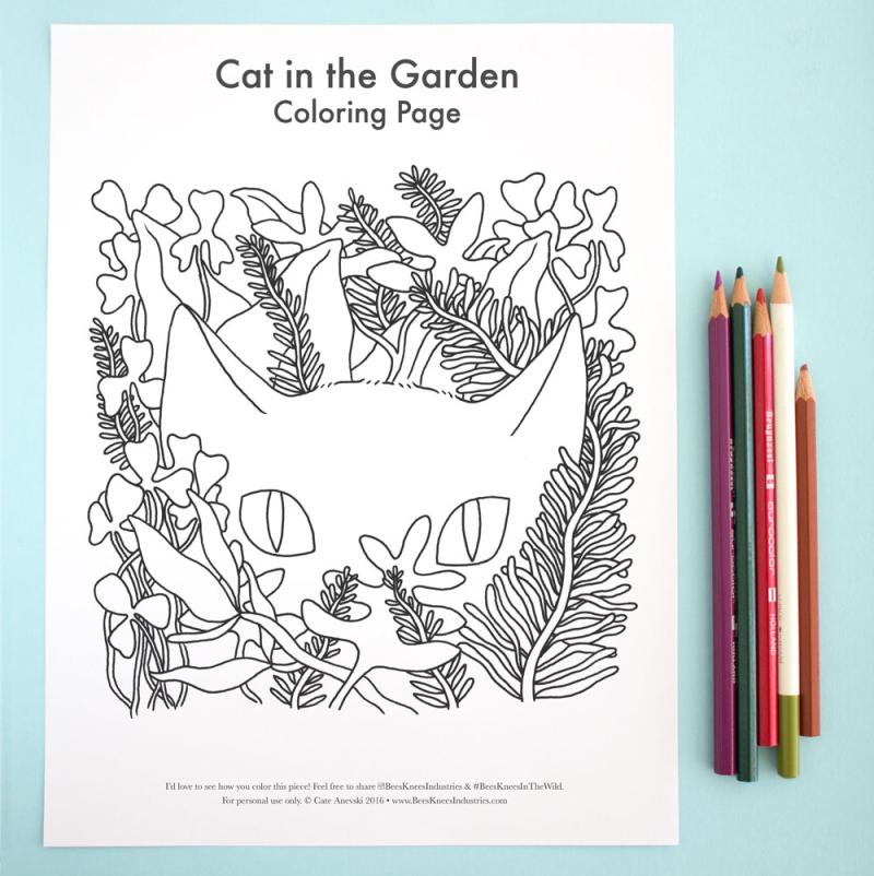 13-cat-in-the-garden