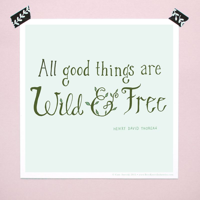 20-wild-and-free