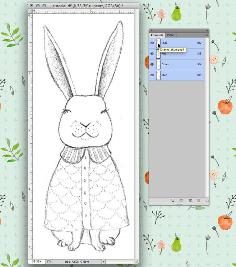 19-rabbit-tutorial3